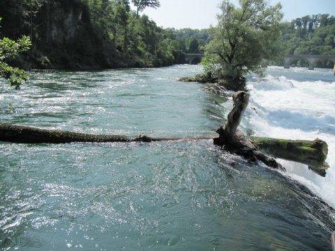 Rajna-vízesés